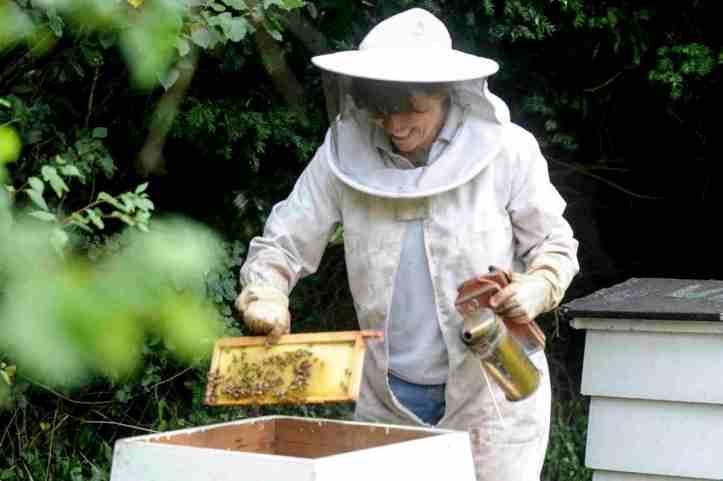 Bees4WEB.jpg