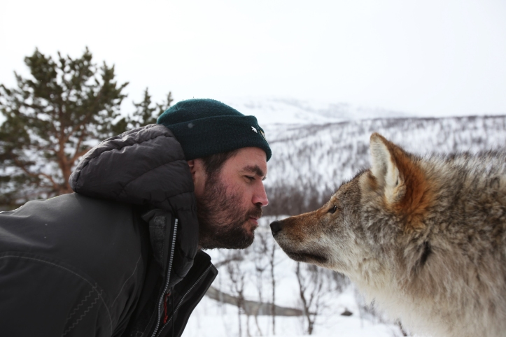 8. Henry kissing wolf, Norway copy.jpg