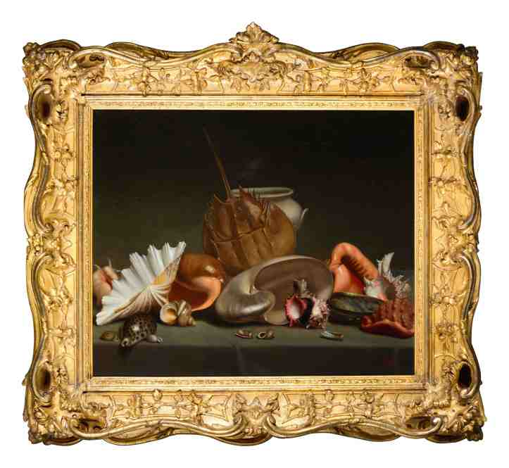 French School, A still life with sea shells and mollusks, 19th Century, Est. £4,000 – 6,000 copy.jpg